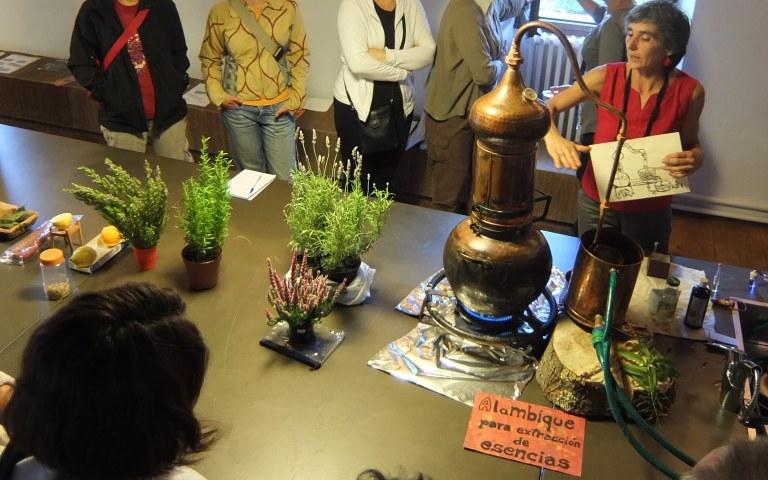 Taller de elaboración de perfumes naturales