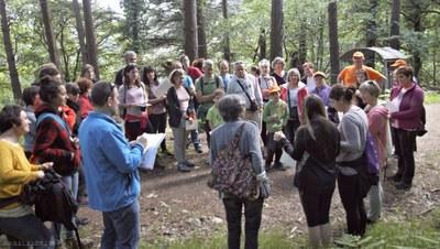 Día de la Vía Verde Mutiloa-Ormaiztegi: conociendo las plantas que tenemos en nuestro entorno