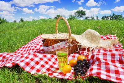Este sábado, dibuja en el picnic