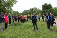 IX Día de la Vía Verde: Mutiloa - Ormaiztegi