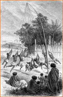 Maorien jokua