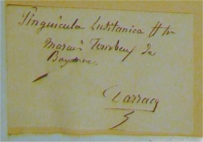 BU_28_Pinguicula_lusitanica2_c